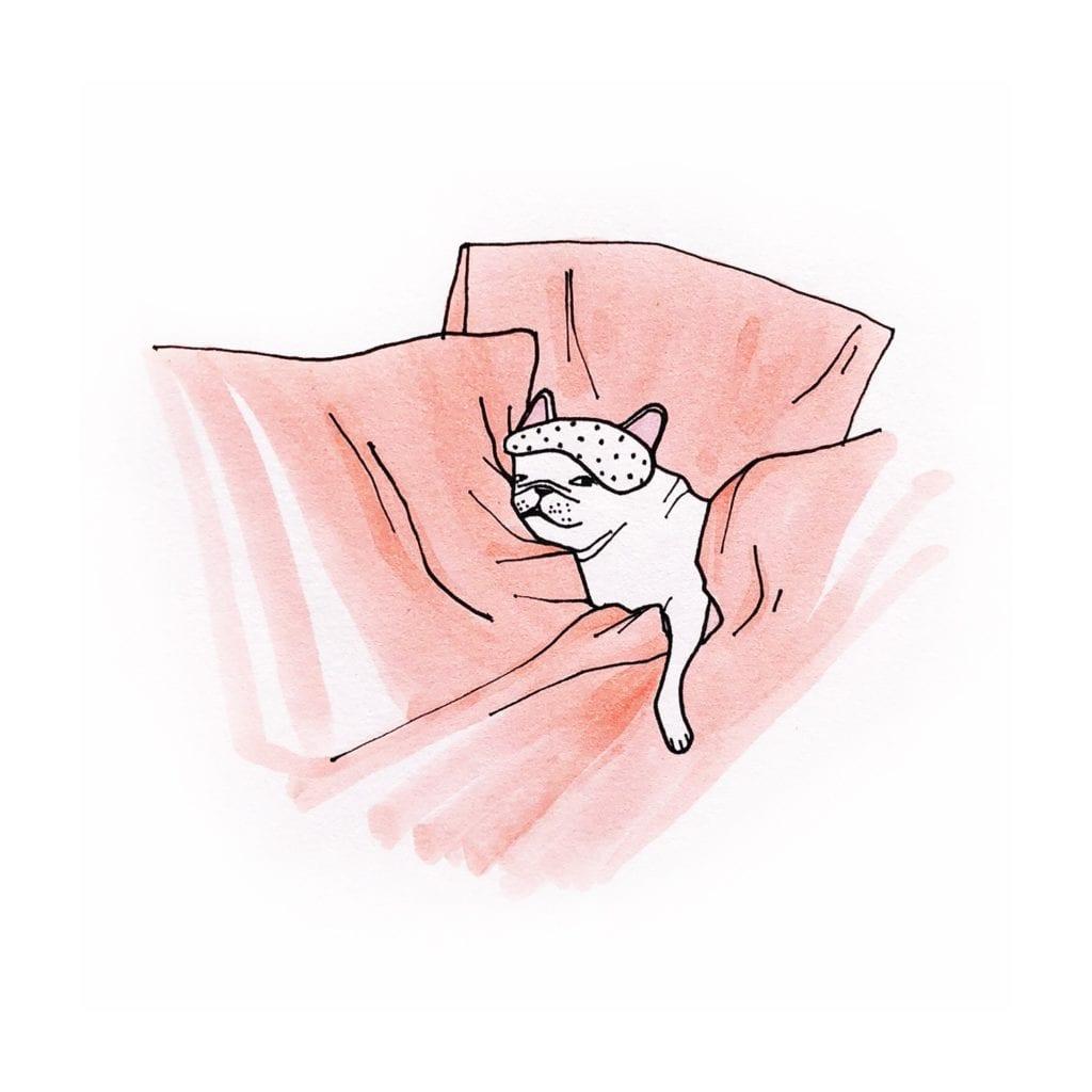 french bulldog drawing