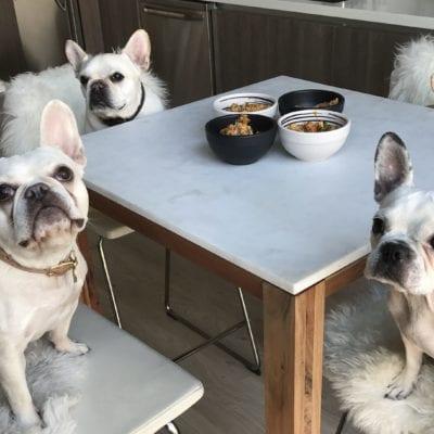 Recipe: Salmon Quinoa Homemade Dog Food
