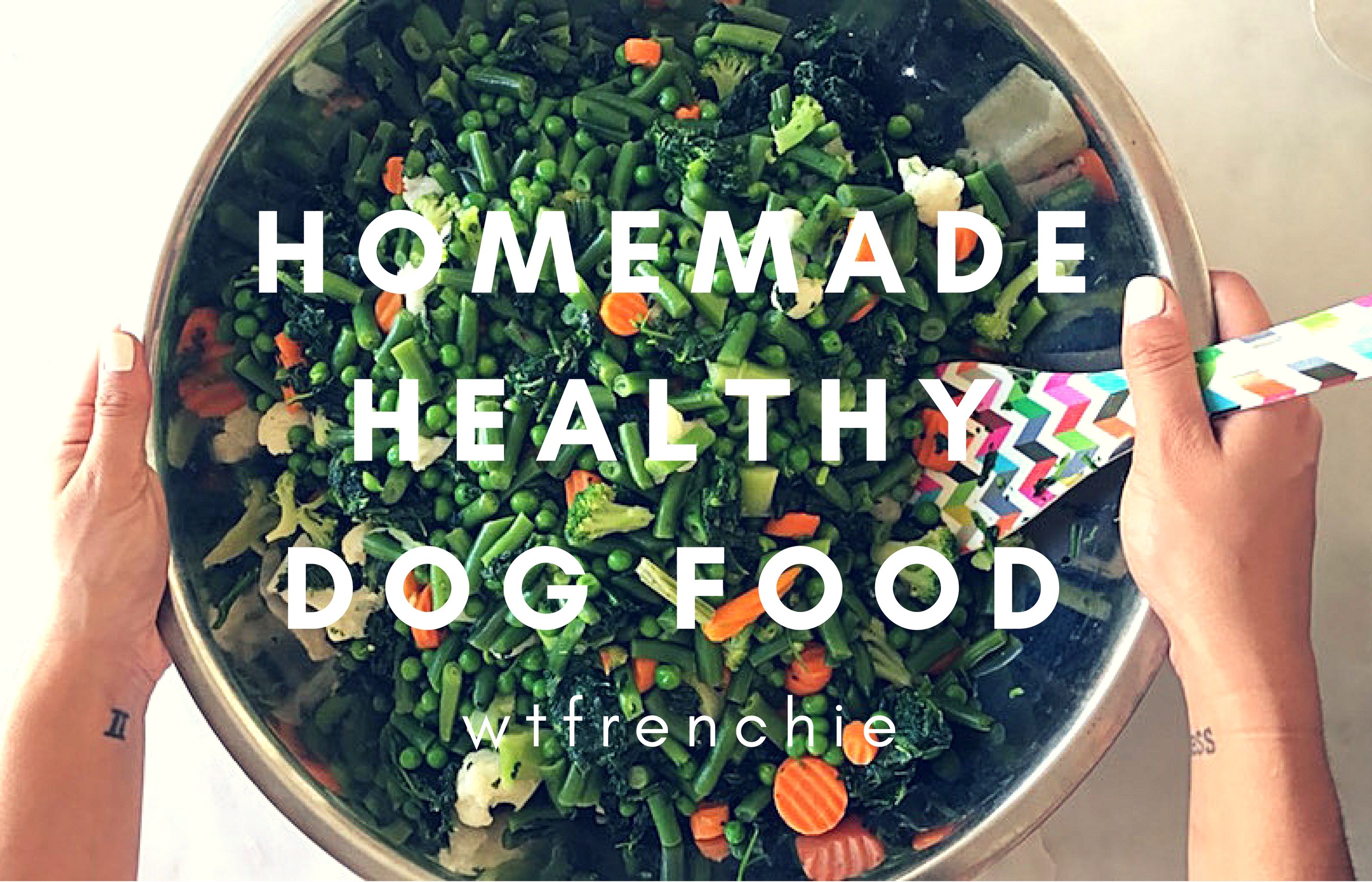 Lifestyle dog food recipes home beauty wheres the frenchie diy healthy homemade dog food using frozen veggies forumfinder Choice Image