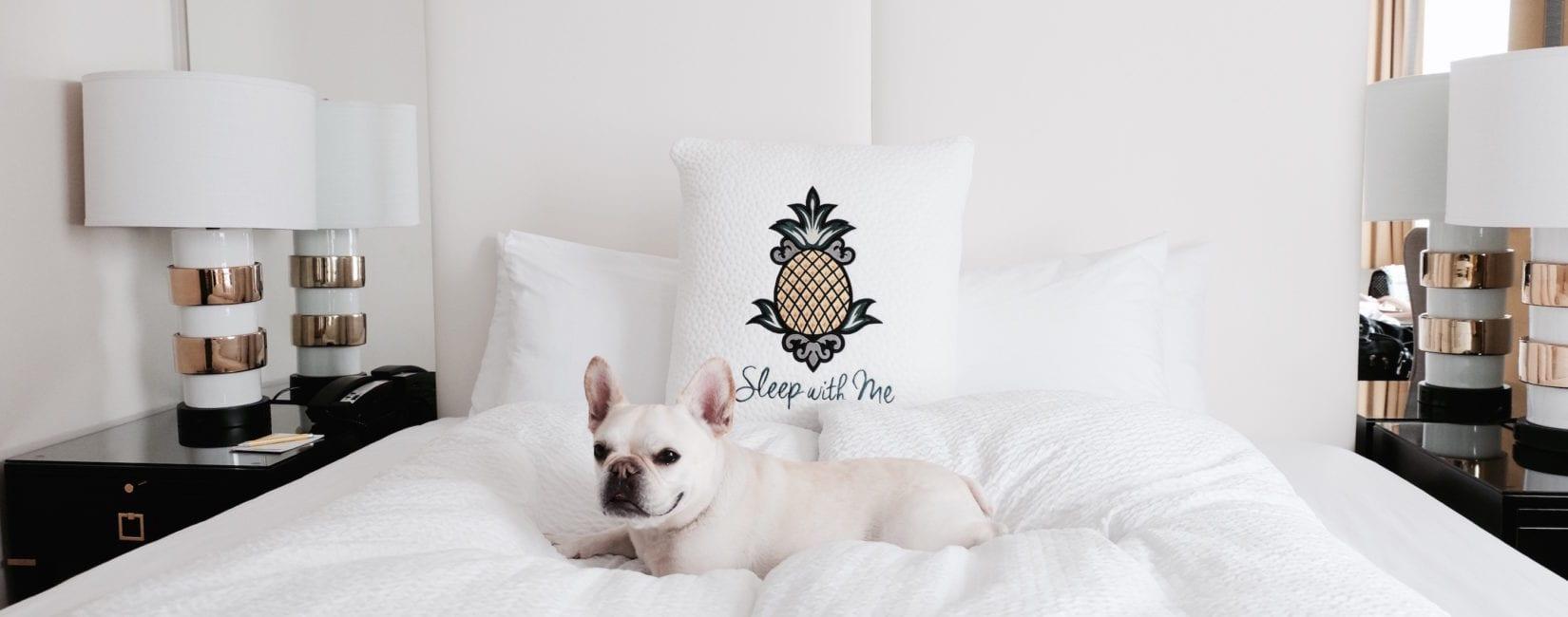 Alise #StayPineapple Hotel