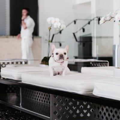 Dream Hotel Miami