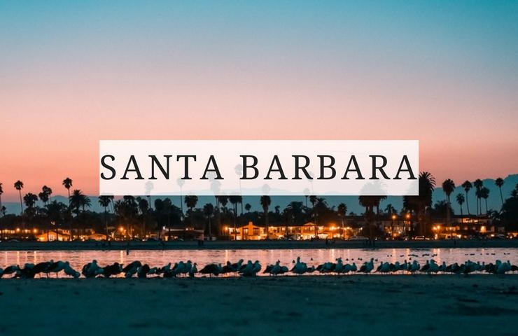 santa barbara things to do dog