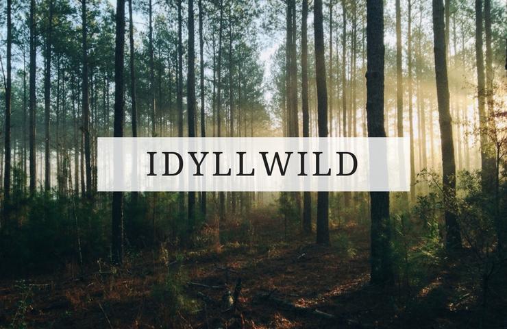 dog friendly idyllwild