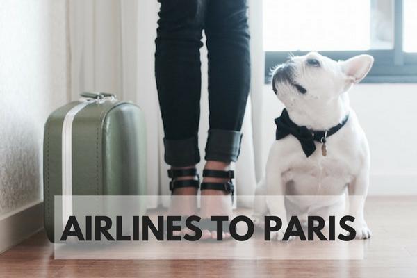 flights to paris with dog