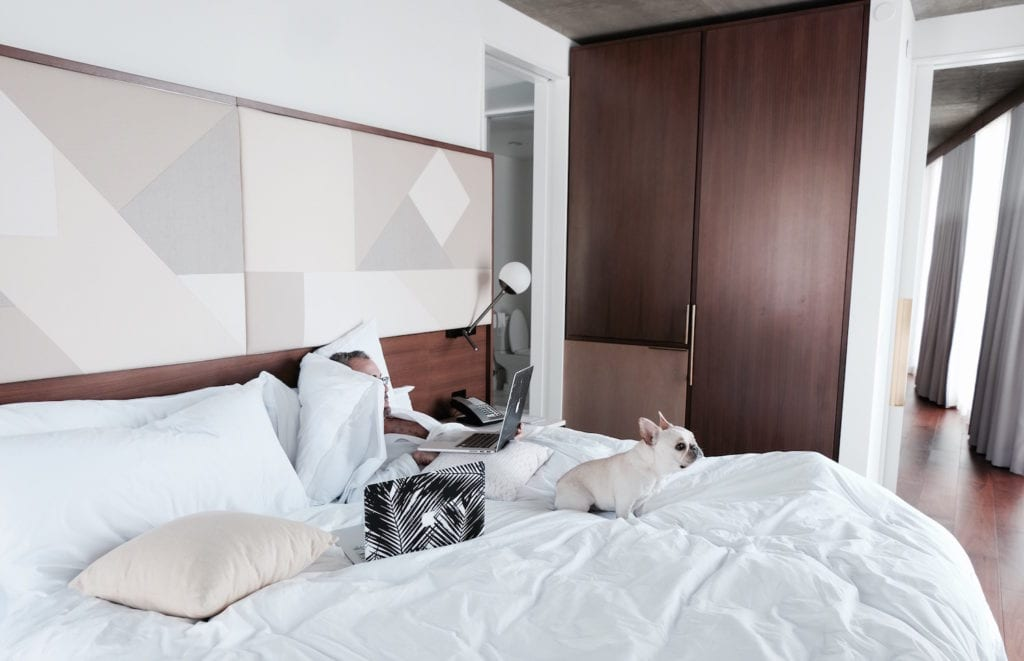 dog friendly hotels in hollywood