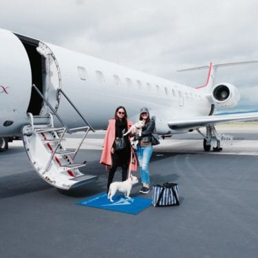 fly private with your dog