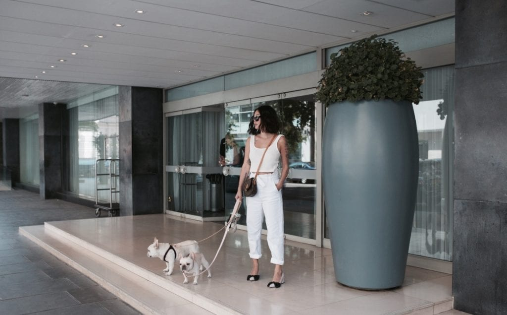 wtfrenchie hotels