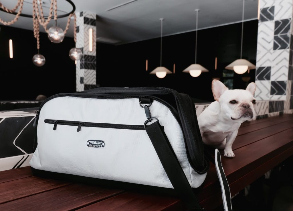 best airline carriers for dogs