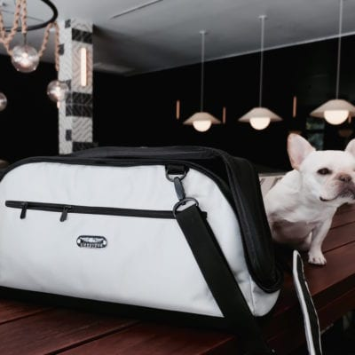 Review: Sleepypod Air In-Cabin Dog Carrier Bag